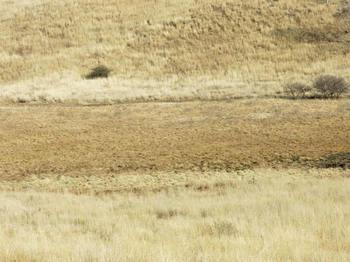 カルペデイムから見る景色