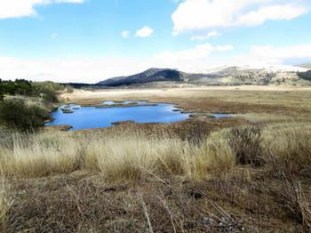 高い位置から眺める八島湿原