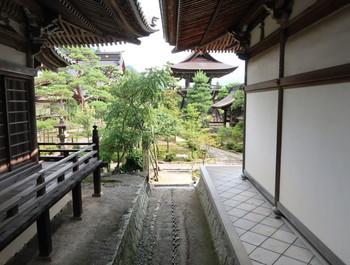 禅昌寺の庭