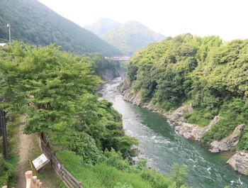 道の駅の展望デッキから飛騨川を見たところ
