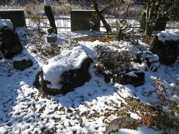 庭の雪が解け始めていた