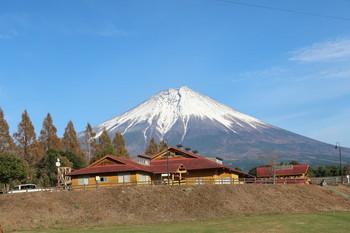 富士ミルクランドから見る富士山