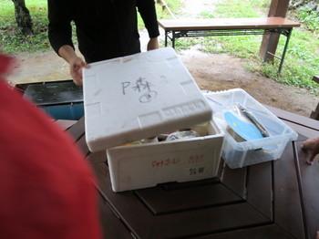 事前予約したバーべキューは、一式が箱に入っている