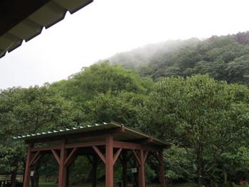 バーベキュー会場から見上げる雨の空